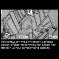 This lightweight Mg alloy contains a profuse amount of deformation twins that enable high strength without compromising ductility.